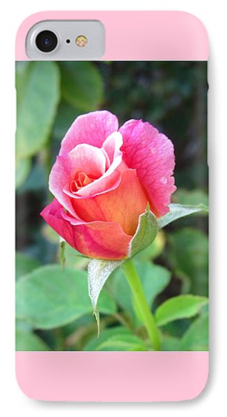 Rosebud With Border IPhone Case