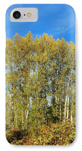 Rosehips And Cottonwoods IPhone Case by Will Borden