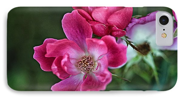 IPhone Case featuring the photograph Roses For You by Susan D Moody