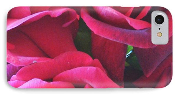 Roses Like Velvet IPhone Case by Dana Patterson