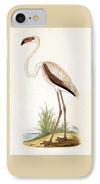 Rosy Flamingo IPhone 7 Case by English School