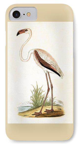 Rosy Flamingo IPhone Case by English School