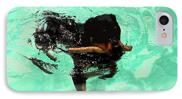 Rottweiler Dog Swimming Phone Case by Sally Weigand