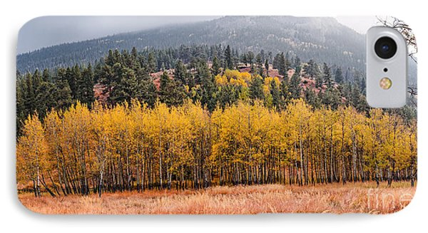Row Of Aspens In The Fall River Valley - Fall Foliage In Estes Park Colorado IPhone Case