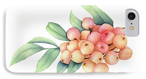 Rowan Berries IPhone Case by Taylan Apukovska