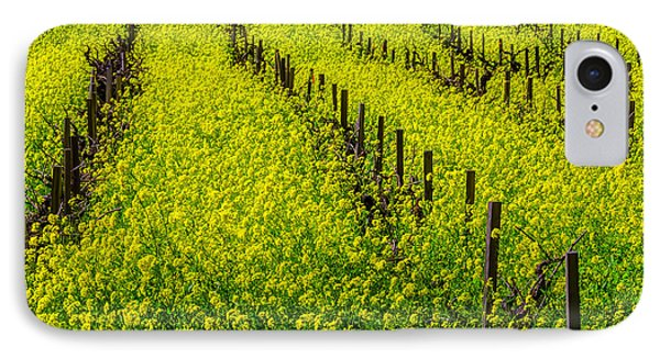 Rows Of Mustard Grass IPhone Case by Garry Gay