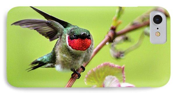Ruby Garden Hummingbird Phone Case by Christina Rollo
