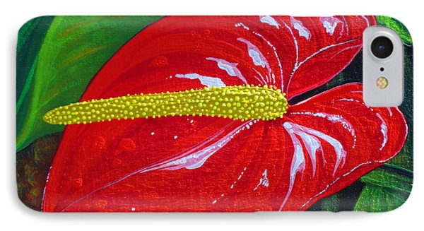 Ruby Holiday IPhone Case by Debbie Chamberlin