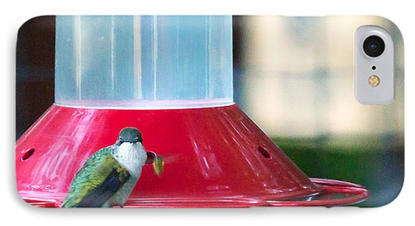 Ruby-throated Hummingbird At Feeder IPhone Case by Edward Peterson
