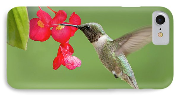 IPhone Case featuring the photograph Ruby Throated Hummingbird Feeding On Begonia by Bonnie Barry