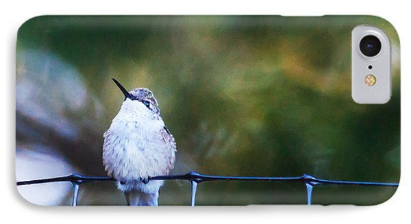 Ruby-throated Hummingbird  Staying Warm IPhone Case by Edward Peterson