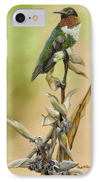 Ruby Throated Hummingbird Study IPhone Case