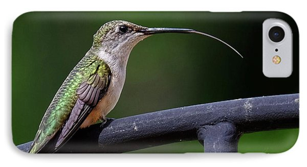 Ruby-throated Hummingbird Tongue IPhone Case