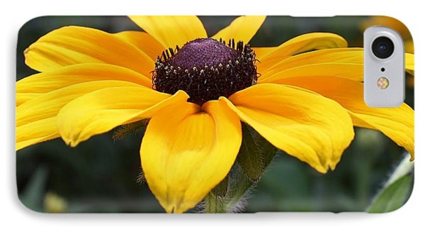 Rudbeckia Bloom Up Close IPhone Case by Bruce Bley