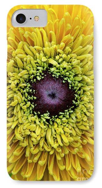 Rudbeckia Hirta Maya IPhone Case by Tim Gainey