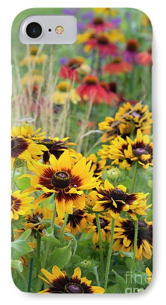 Rudbeckia Sonora  IPhone Case by Tim Gainey