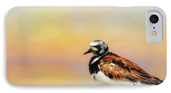 Ruddy Turnstone IPhone Case
