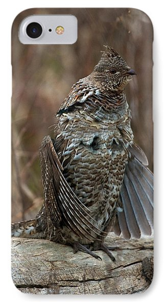 Ruffled Grouse Drumming Phone Case by Gary Langley