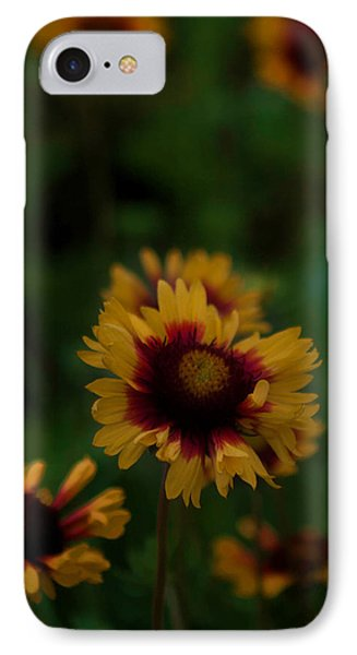IPhone Case featuring the photograph Ruffled Up by Cherie Duran