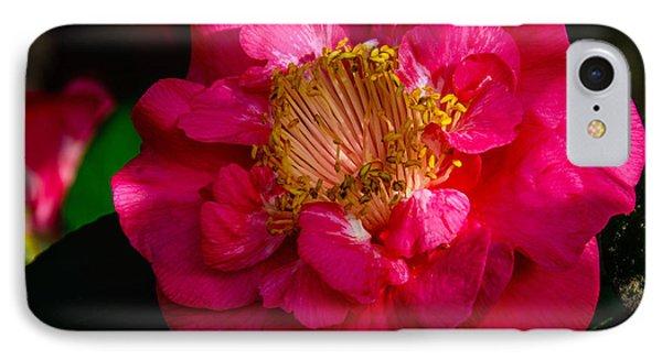 Ruffles Of Pink  IPhone Case by John Harding