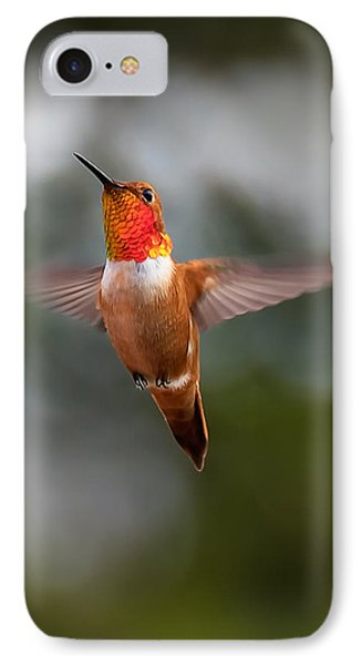 Rufous Hummingbird IPhone Case