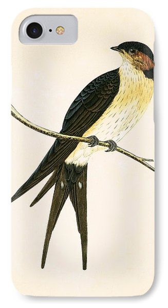 Rufous Swallow IPhone 7 Case by English School