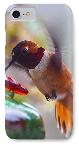 Rufus Hummingbird At The Feeder IPhone Case