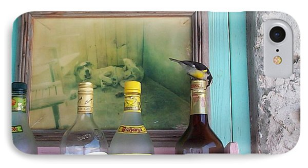 IPhone Case featuring the photograph Rum Shack Bananaquit by Mary-Lee Sanders