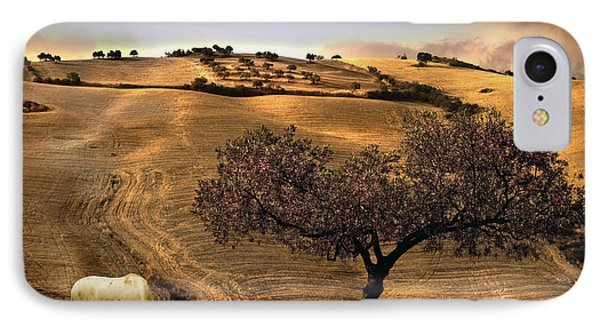 Rural Spain View IPhone Case