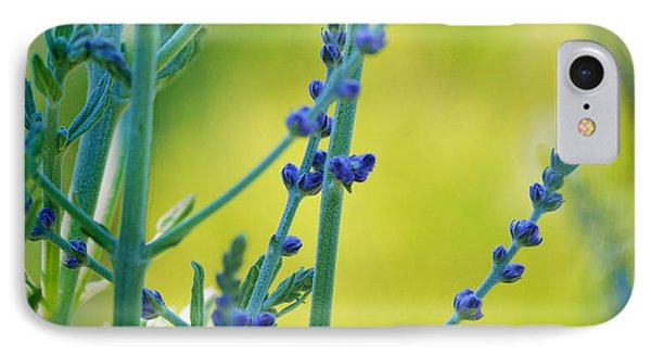 IPhone Case featuring the photograph Russian Sage by Douglas MooreZart