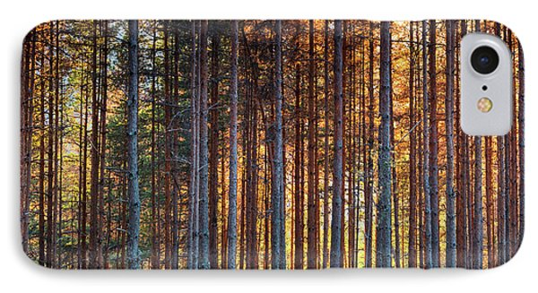 Rusy Forest Phone Case by Evgeni Dinev