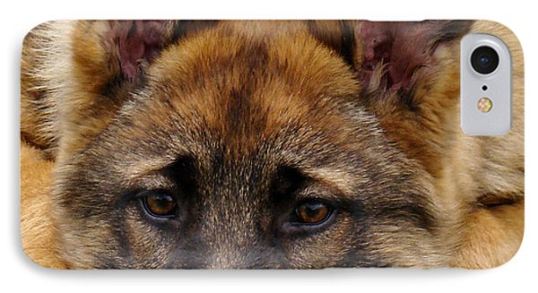 Sable German Shepherd Puppy IPhone Case by Sandy Keeton