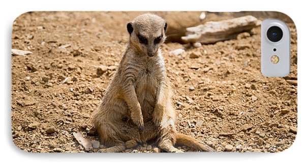 IPhone Case featuring the photograph Sad Meerkat by Scott Lyons
