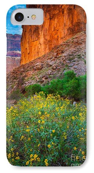Saddle Canyon Flowers IPhone Case by Inge Johnsson