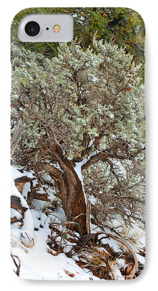 IPhone Case featuring the photograph Sage Brush Williams Arizona by Donna Greene