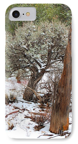 IPhone Case featuring the photograph Sage Bush Grand Canyon by Donna Greene