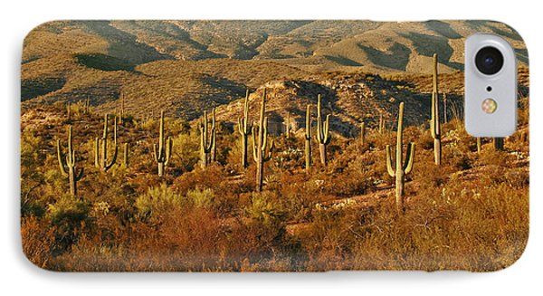Saguaro Cactus - A Very Unusual Looking Tree Of The Desert Phone Case by Christine Till