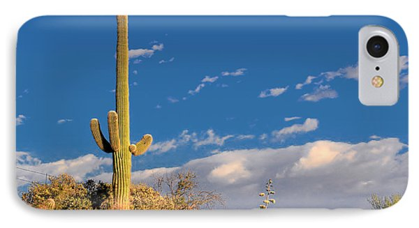 Saguaro Cactus - Symbol Of The American West Phone Case by Christine Till