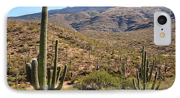 Saguaro National Park IPhone Case by Gina Savage