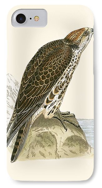 Saker Falcon IPhone 7 Case