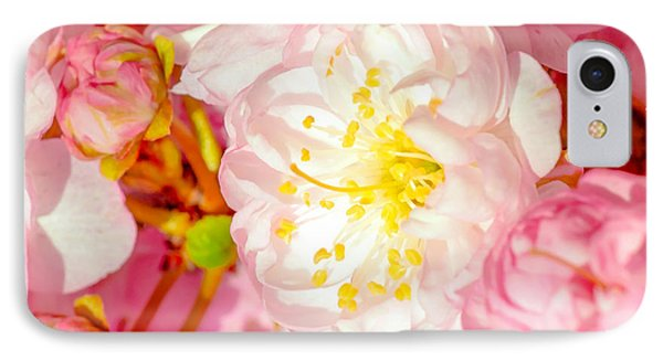 IPhone Case featuring the photograph Sakura Cherry Flower - Wedding Of Nature by Alexander Senin