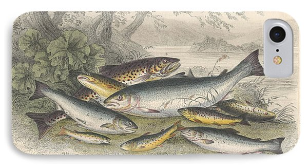 Salmon And Trout IPhone Case