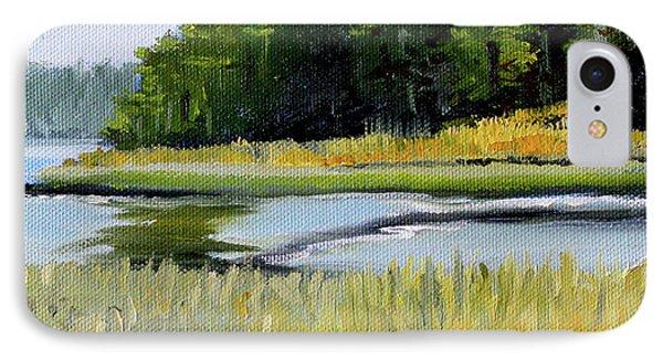 IPhone Case featuring the painting Salt Creek by Nancy Merkle