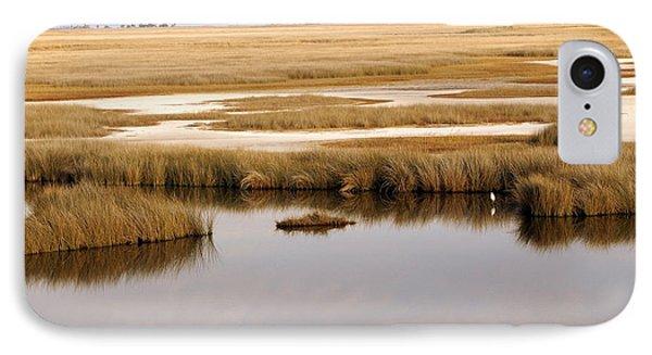 Saltwater Marsh Phone Case by Marty Koch