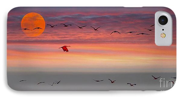 Sand Hill Cranes At Sunset/moonrise IPhone Case