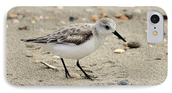 Sanderling Phone Case by Al Powell Photography USA