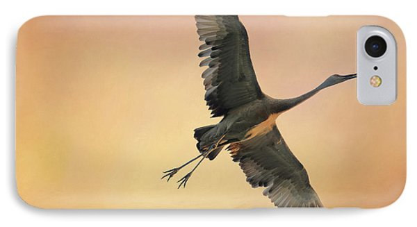 IPhone Case featuring the photograph Sandhill At Sunset by Donna Kennedy