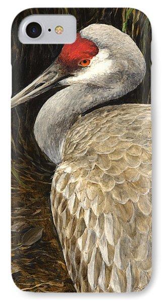 IPhone Case featuring the painting Sandhill Crane - Realistic Bird Wildlife Art by Karen Whitworth