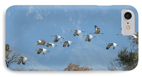 Sandhill Cranes In Flight IPhone Case by Alan Toepfer
