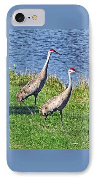 Sandhill Pair IPhone Case